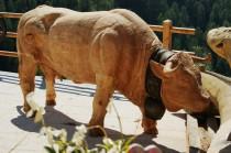Vache Mase